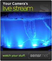 Embedded live streamg